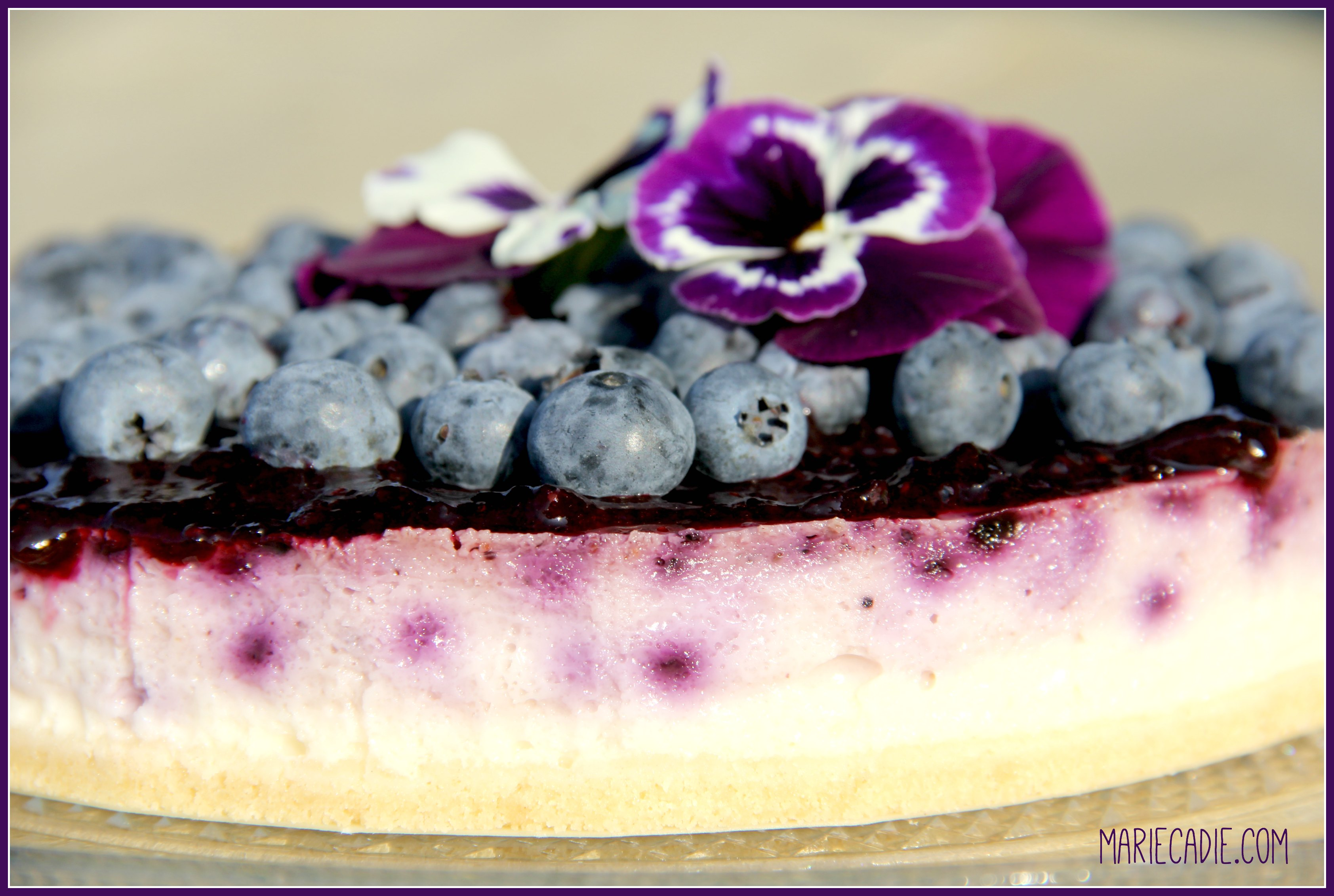 mariecadie-com-dr-oetker-blueberry-cheesecake_2