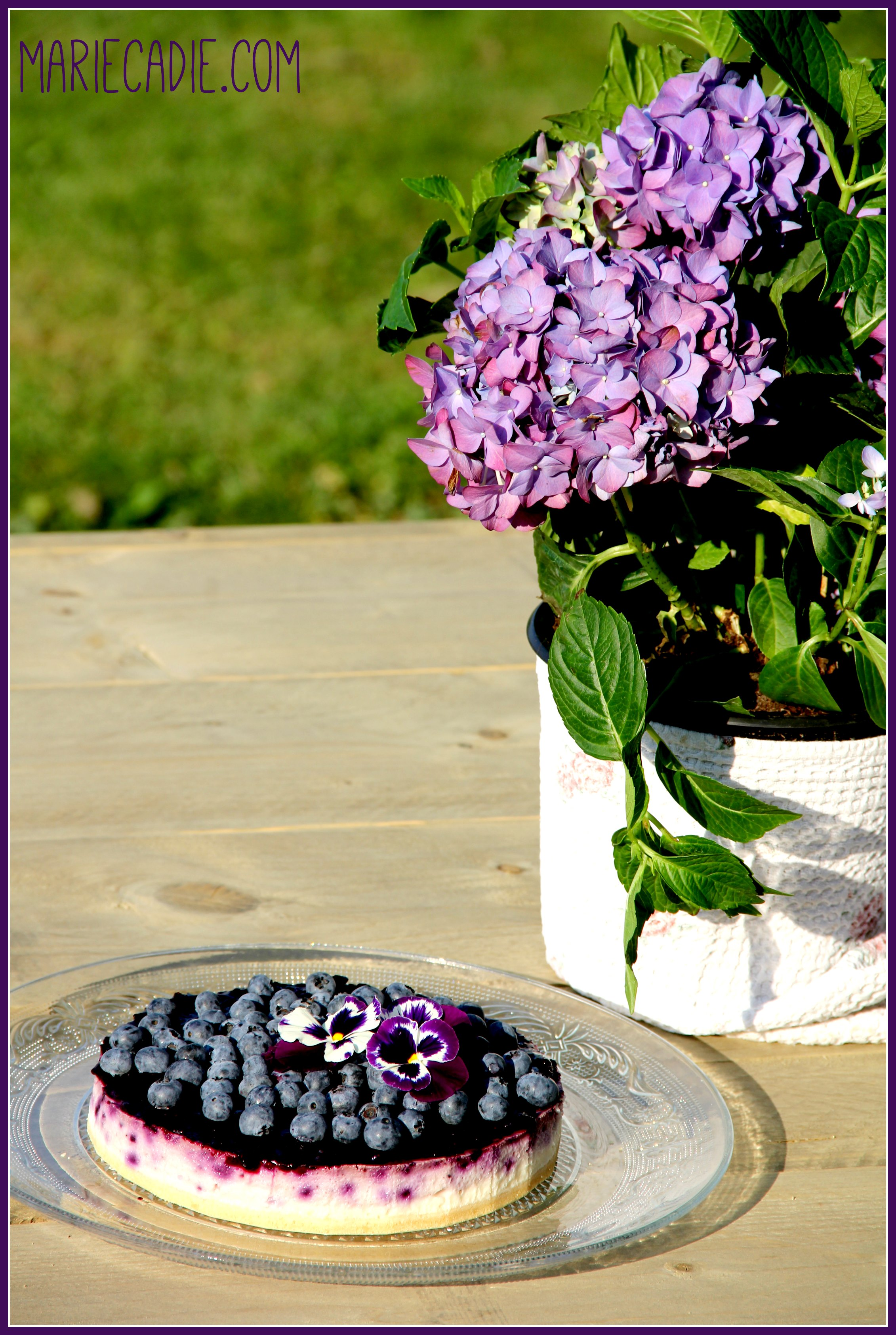 mariecadie-com-dr-oetker-blueberry-cheesecake_3