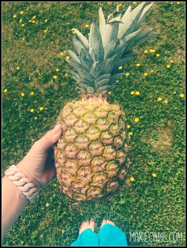 MarieCadie ananas munt thee 2
